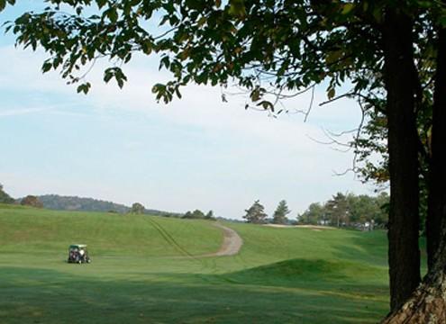 golf-arbre-1030x360